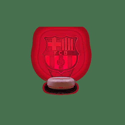 Jouw lamp in de kleuren van je favoriete team!
